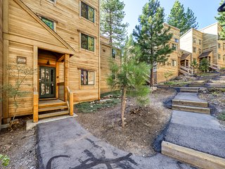 Large, dog-friendly condo close to skiing & downtown w/ a shared pool