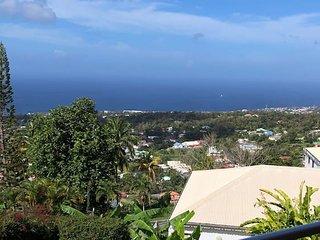 Nice studio with sea view & terrace