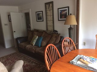 LOCATION!  2BD/1BA vacation rental CLOSE to GORE MT, TOWN and HUDSON RIVER
