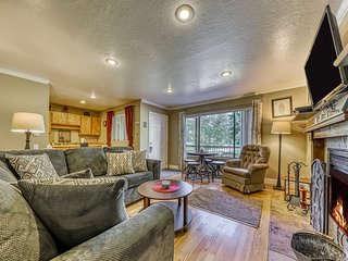 Spacious, dog-friendly condo w/ incredible mountain views - walk to lifts!