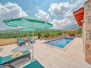Villa Zen : A Specious Villa In Nature