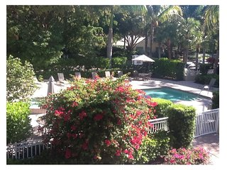NEW LISTING!  BEST Naples Location! Elegant Downtown Condo w POOL/BBQ/SPA!!