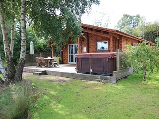 Luxury wooden lodge,Avocet Lodge