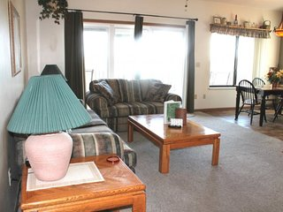 Beautiful Lake View!! 2 bed 2 bath Condo- Large Deck- Close to SDC! Pool and Jac