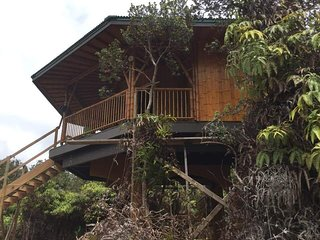 Newly Listed - Big Island Bamboo Treehouse
