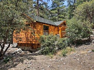 Quaint Studio Cabin - 1 Mi to Mt Baldy Resort