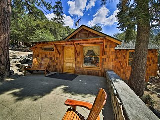 NEW! Inviting Mt Baldy Studio w/View - 1mi to Rsrt