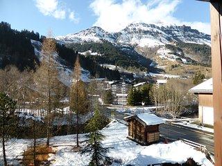 Appartement 550m des Pistes | Casier à Ski!