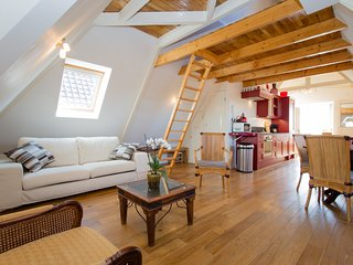 Light, spacious apartment with roof terrace next to Vondelpark and major museums