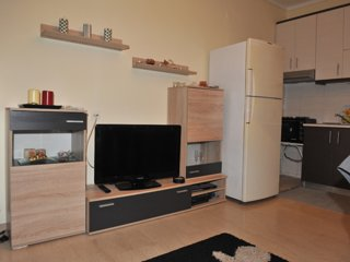 Cozy apartment near the city center with Netflix!