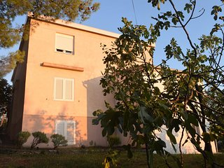 Two bedroom apartment Starigrad (Paklenica) (A-17865-b)