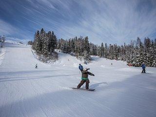 Mullsjö Alpin är en skidanläggning för hela familjen med besökare från Sve o Dan