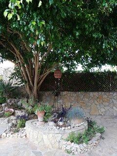 Detalles del jardín.