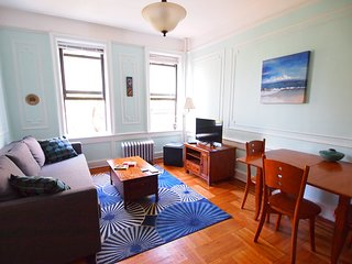 Sunny Brooklyn Apartment