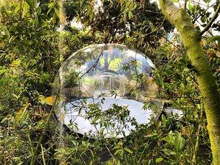 Zen-tir Glamping Experiencial,bajo las estrellas en el dosel de los arboles