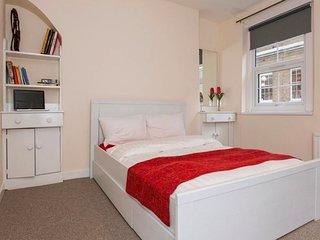 Euston Apartment near St Pancras - King's Cross - Camden (RU/CL)