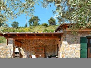 Matisse (SLR140)
