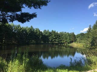 Tentrr - Moonlit Pond
