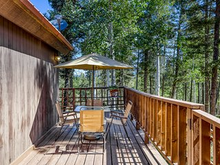 Contemporary cabin w/ fireplace, deck, shared dock, tennis, gym/fitness!