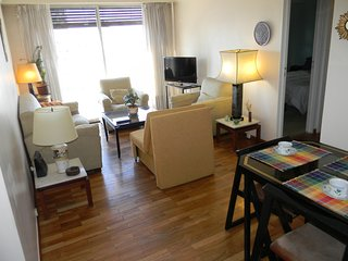 Two Bedroom apt in heart of the city in Recoleta