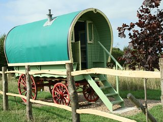 Primrose Our Beautiful Gypsy Caravan