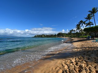 Napili Shores Unit E240: Fantastic Remodel! Just A Short WalkTo Napili Bay!!
