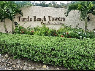 41D Turtle BeachTowers