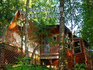 Blueberry Hill -two bedroom hand crafted log cabin, minutes from Nantahala Lake