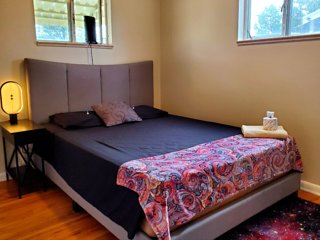 Terrific Bright Starry Room Near Downtown & Park!