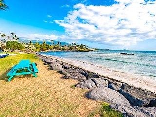 Island Surf . Ocean Views!  Immaculate Condo  Sleeps 4