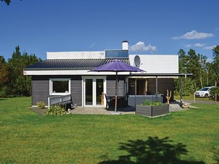 Nice home in Skjern w/ WiFi and 3 Bedrooms