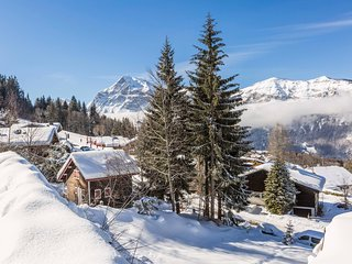 Super endroit ! Appartement cosy au pied des pistes, local a skis sur place