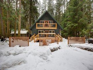 Mt. Baker Lodging  Cabin #49 – HOT TUB, FIREPLACE, PETS OK, WIFI, SLEEPS 10!