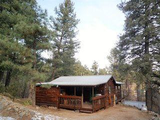 Bear Creek Cabin - Cozy Cabins Real Estate, LLC.