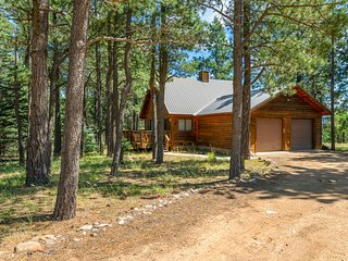 Woodland cabin w/ fireplace, decks & gorgeous setting - near the lake/tennis!