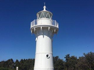 'Lighthouse Palms'