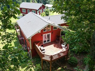 NEW! Hendersonville Studio w/Mtn Views & Fire Pit!