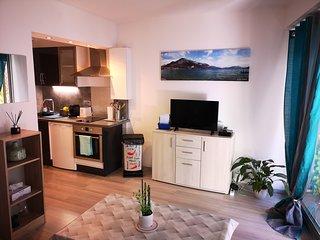Appartement ' Le Cosy ' en Centre ville de Thonon les Bains