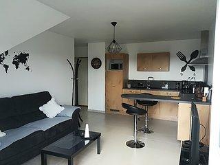 Appartement moderne, refait a neuf avec garage.