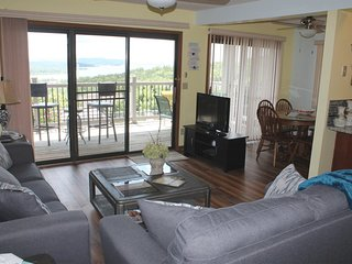 Panoramic Lake View! Great place for a Warm and Cozy Holiday! Close to SDC, Newl
