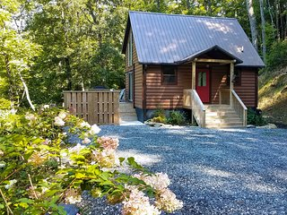 Scenic Cabin w/ Hot Tub - 15 Mins to Bryson City!