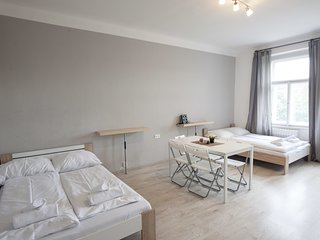 Two bedroom apartment in Žižkov area ideal for group of friends