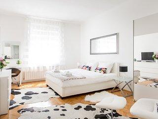 Spacious 2BDR Apartment on Tkalciceva Street