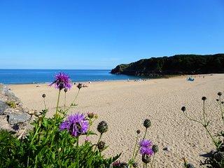 Ty Gaer, 3 bedroom, Dog friendly, Sea Views, Near Beach, Pembrokeshire