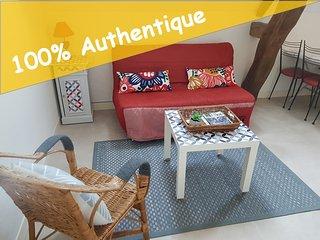 Gite La Voilerie 1 a 6 pers, entre Beauval et Amboise
