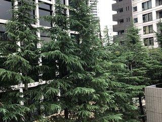 Akasaka Design flat rental , 3BR