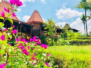 Villa Neyang - Hideaway Relax in the Rice field farm stay