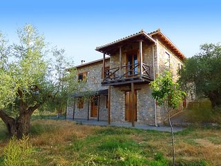 Luxurious Mansion in olive grove & view to Mystras