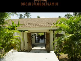 ORCHID LODGE - YELLOW