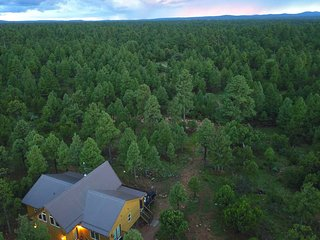 Pine Haven - Family Friendly Cabin on 5 Acres Backs National Forest